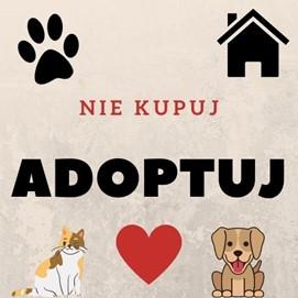 Obrazek z napisem: nie kupuj Adoptuj