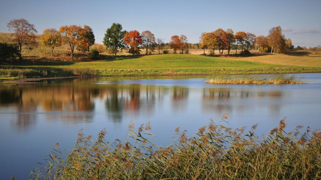 Zdjęcie jesienią jezioro i łaka
